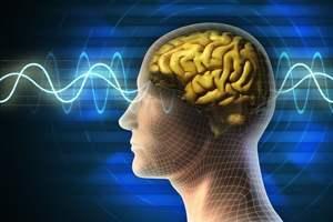 择思达斯经颅磁刺激仪|癫痫病应该如何进行诊断